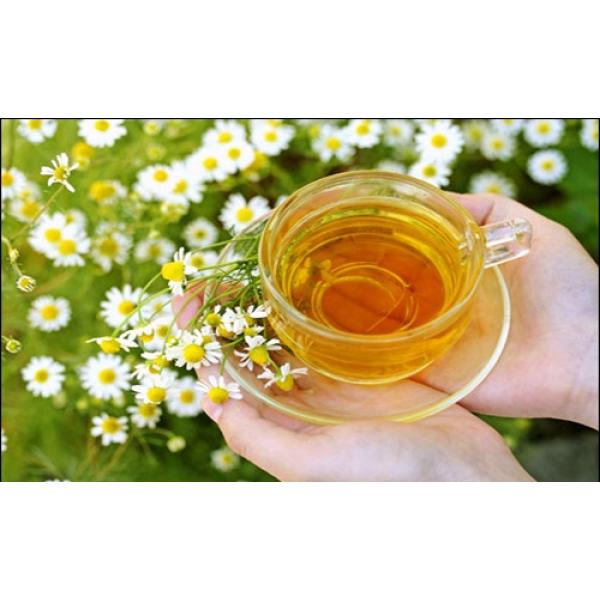 Trà hoa và những công dụng bất ngờ đối với sức khỏe